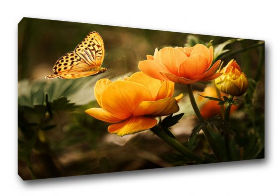 Butterfly with Orange Flowers. Nature Art Canvas. Sizes: A3/A2/A1